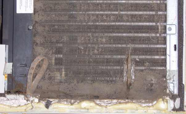 Photo of dirty evaporator clogged with dirt.